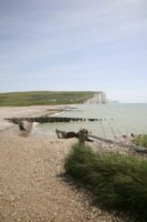 Coastal Nature Reserve East Sussex