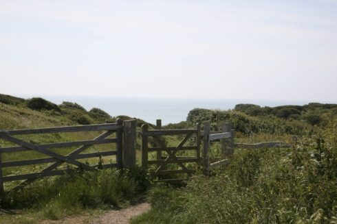 FD0011 Costal Cliff Nature Reserve East Sussex 3